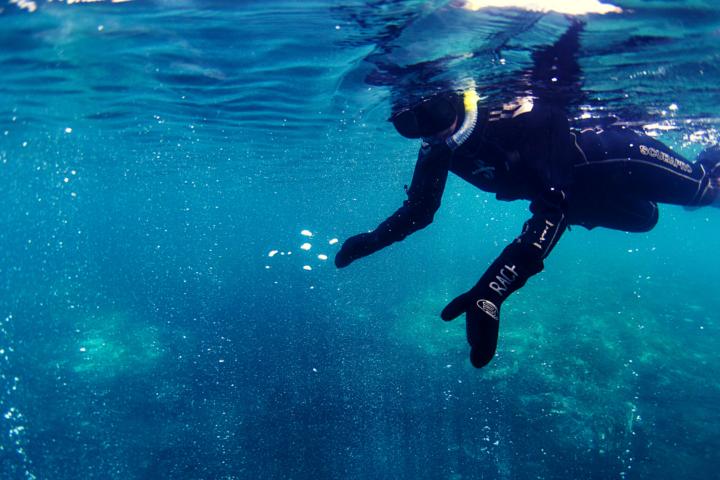 Hot spring snorkel tour